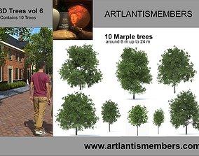 trees vol 6 3D model