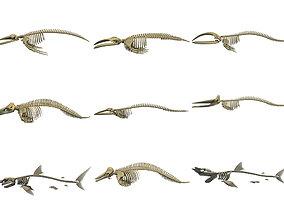 Aquatic Skeletons 3D Models