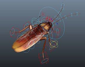 rigged cockroach 3d maya rigged biology
