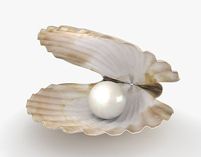 3D Seashell with Pearl
