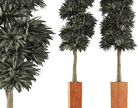 3D Plants Collection 102