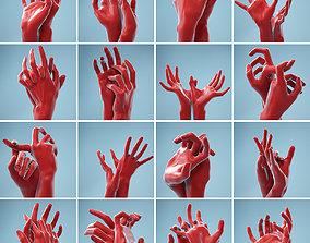 3D model 11 Interacting Realistic Hands