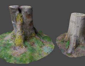 3D Scanned Tree Stumps game-ready