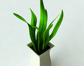 3D model Potted Plant-2