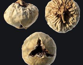 Dried Fig C 3D model