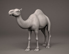 Camel 3D printable model