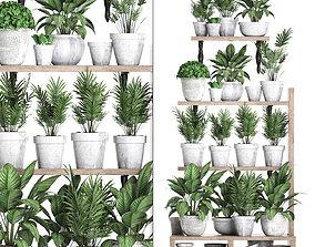 3D model Plants collection Vertical gardening 28