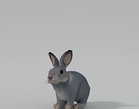 3D model Grey Rabbit