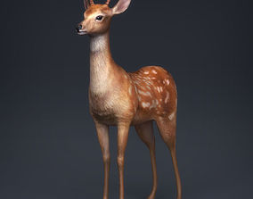 3D asset Low Poly Realistic Deer