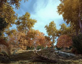 Forest Scene 003 3D