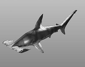 hammerhead shark low poly 3D model animated