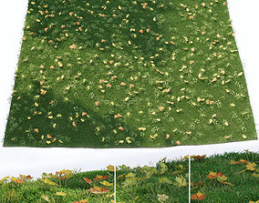 3D Lawn with fallen leaves