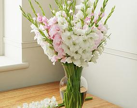 Gladiolus 3D model