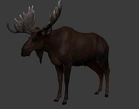 3D asset low-poly Moose