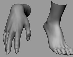 3D Female Hand Foot