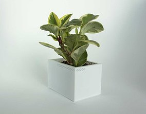 3D print model 003h - Planter - Small Rectangular -