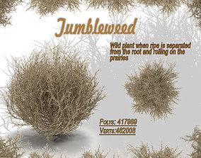 tumbleweed 3D model Tumbleweed