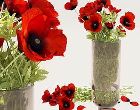 3D Field poppy a bouquet in a vase
