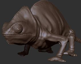 Chameleon 3D model rigged