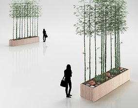 Tall Bamboo Hedge in Wooden Pot 3D model