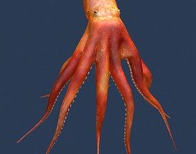 Octopus V2 3D model