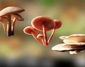 VR / AR ready Game ready PBR Mushrooms 3D model SET 2