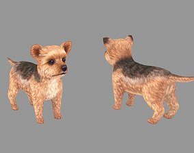 3D model Cartoon pet puppy - Yorkshire - baby dog