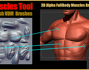 3D model Muscles Tool For Zbrush