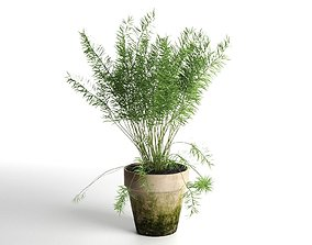 3D model Plant Pot 1