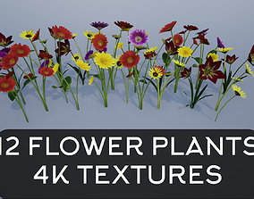 plant 3D model 4K Lowpoly Flower Plants Collection