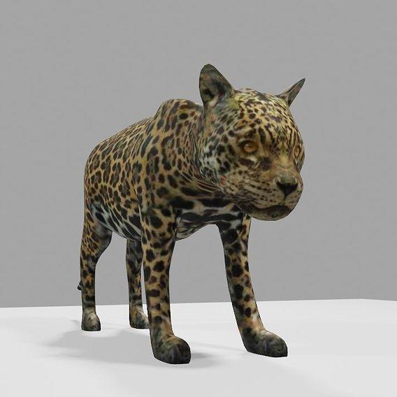 Jaguar - Ounce