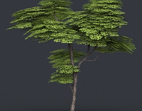 3D model Low Poly Tree 13