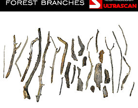 3D asset Wood Branch Pack 28