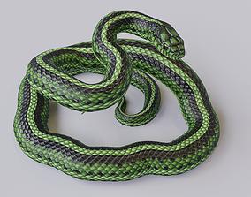 3D model Rigged Green Snake