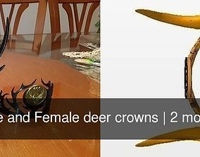 3D model Male and Female deer crowns