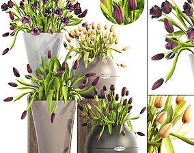 tulips 3D leaf
