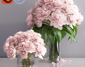 3D model Elegant pink peonies in 2 vases