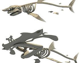 Set of Sharks Skeletons 3D