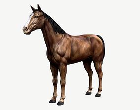 Horse 3D model VR / AR ready animal
