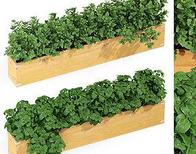 3D model Plants collection 291