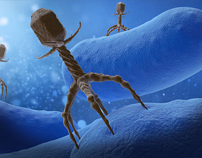 3D Bacteriophage Attacing Bacteria