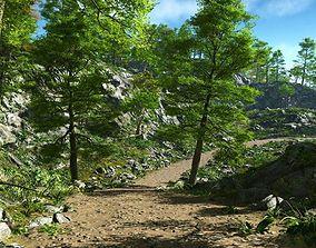 3D Rough path in Vue