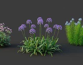 XfrogPlants Garden Flowers Pack 1 3D