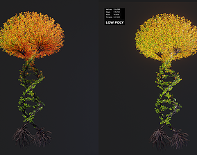 3D model Tree in a shape of a DNA chain