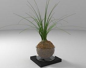 Ball Plant 3D