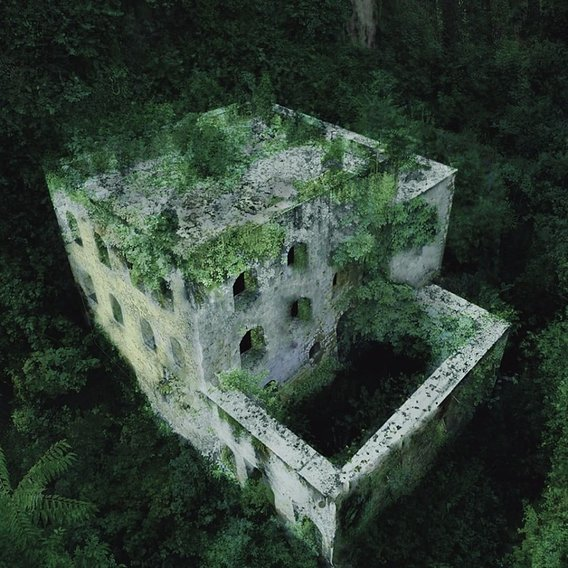 Building in the forest