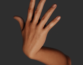 Hand rigged 3D model