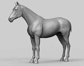 Horse - Realistic Highpoly Sculpture 3D model animal