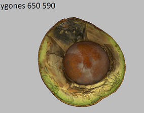 3D asset Avocado old rotten used