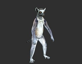 3D Ring Tailed Lemur